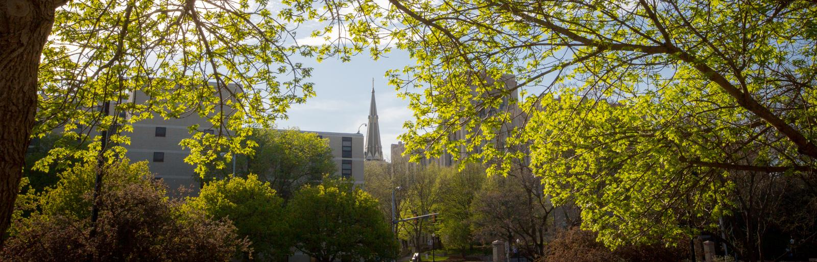 Steeple of St. John's Catholic Church seen through trees on Creighton University campus